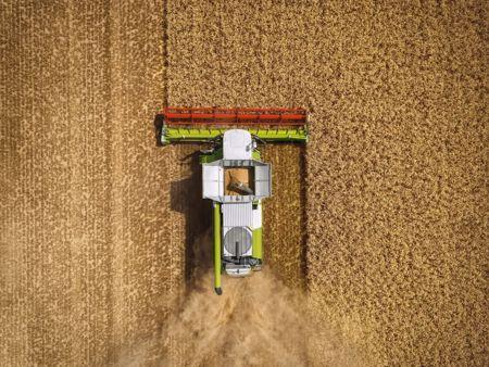 Immagine per la categoria Macchine da raccolta CLAAS